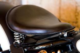 Harley Davidson FLSTF Bobber
